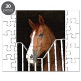 Franka in the Stall Puzzle