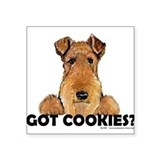 Irish Terrier Cookies Rectangle Sticker