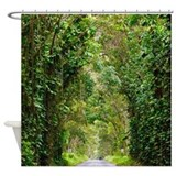 kauai_tree_tunnel_hawaii_tropical_shower_curtain.jpg?color=White&height=160& ...