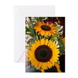 Sunflower Greeting Cards (Pk of 10)