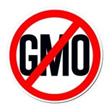 NO GMO Round Car Magnet
