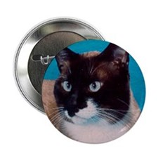 Snowshoe cat Button