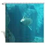 Seal swimming Shower Curtain