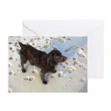 Unique Dog pawprint Greeting Cards (Pk of 20)