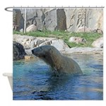 Polar bear in water Shower Curtain