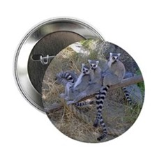 Lemur Line Button