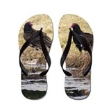 Turkey Vulture Flip Flops