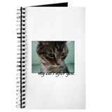 """My Cat's After You"" Journal"