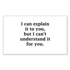 I Can Explain It To You Decal