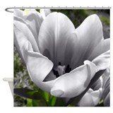 BW Tulip Shower Curtain