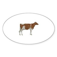 Guernsey Milk Cow Decal