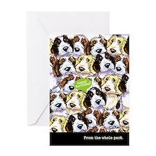 Funny Birthday from Group PBGV Greeting Card