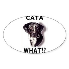 cata WHAT? Rectangle Decal
