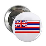 Hawaii Hawaiian Blank Flag Button