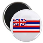 Hawaii Hawaiian Blank Flag Magnet
