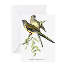 Antique 1875 John Gould Parakeets Bird Print Greet