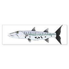 Great Barracuda fish Bumper Bumper Sticker