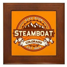 Steamboat Tangerine Framed Tile