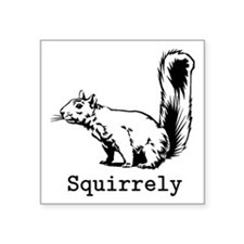 "Squirrely Square Sticker 3"" x 3"""