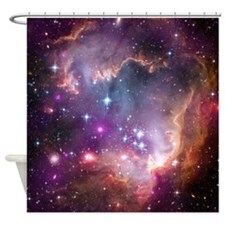 SMC Shower Curtain