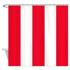 Bold Red Stripe Shower Curtain