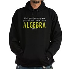 Didn't use algebra today Hoodie