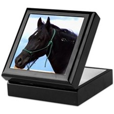 Mustang Horse Custom Keepsake Box