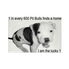 Cute Pit bull rescue Rectangle Magnet (10 pack)
