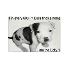 Cute Pit bull rescue Rectangle Magnet