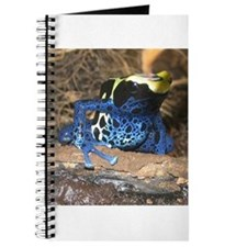 Unfriendly Frog Journal