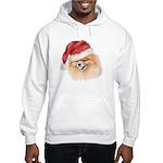 Christmas Pomeranian Hooded Sweatshirt