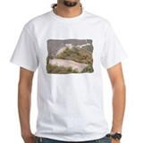 Climbed Great Wall Photo - Shirt