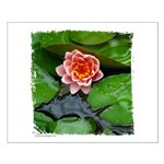 Water Lily Small Poster