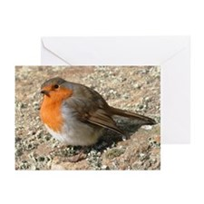 Robin Redbreast Cards (Pk of 10)