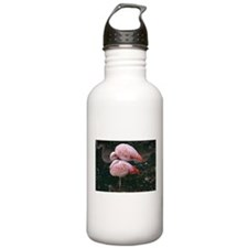 reflections Water Bottle