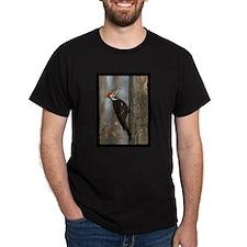 Pileated Woodpecker Black T-Shirt