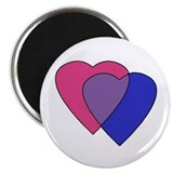 Cute Gay pride Magnet