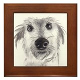 Cute scruffy lurcher Framed Tile