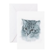 Maincoon Greeting Cards (Pk of 10)