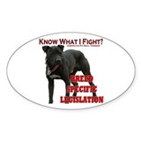 """I Fight BSL"" Rectangle Decal"