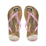 Meerkat Flip Flops