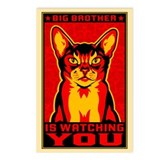 CAT Big Brother Postcards (8 Pack!)
