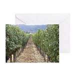 Napa Valley CA - Greeting Cards (Pk of 10)