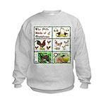 Christmas Birds Kids Sweatshirt