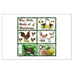 Christmas Birds Large Poster