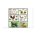 Christmas Birds Mini Poster Print