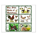 Christmas Birds Small Poster