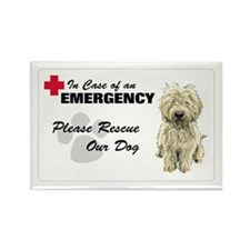 Please Rescue My Dog Rectangle Magnet (10 pack)