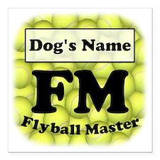 "FM, Flyball Master 3""x3"" Magnet"