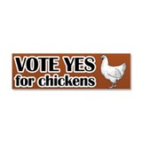 Vote Yes for Chickens bumper Car Magnet 10 x 3
